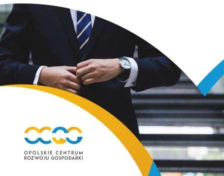 Strony internetowe Opole - projekt brandingu - identyfikacja wizualna
