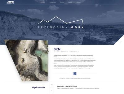 skn-portfolio 01