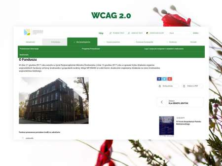 Grafika WCAG 20