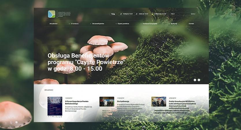 Strona internetowa Łódź